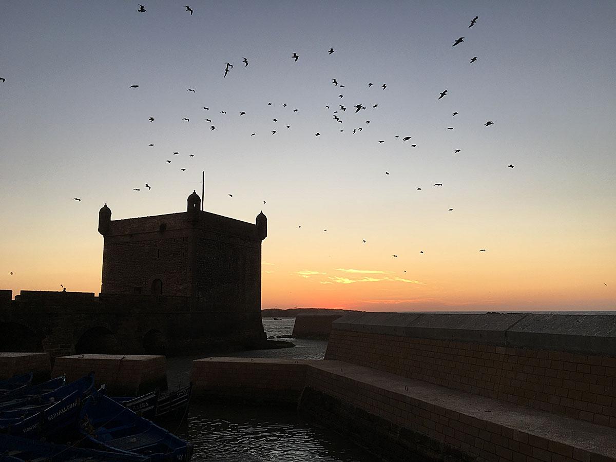 Coucher de soleil sur le port d'Essaouira